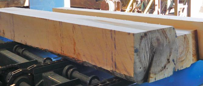 Pallet Enterprise Positioned for the Next Lumber Market Upswing – Lumber Broker
